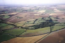 arial photograph of agricultural land